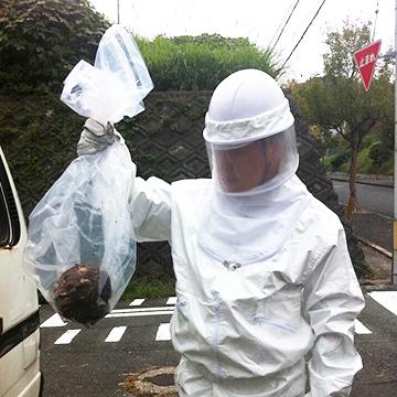 写真:ハチ駆除後